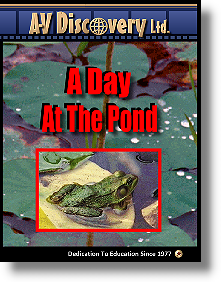 A Day At The Pond Educational Video